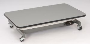 Electric Lowboy Dog Grooming Table