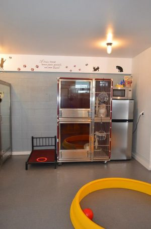 Double Stack Dog Kennel