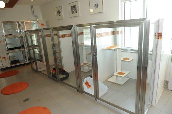 Dog Houses Indoor Uk