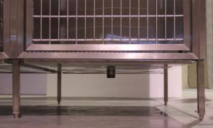 Raised Kennel Runs: Increase Revenue Without Costly Construction
