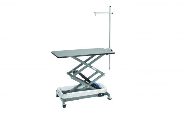 Direct Animal photo: When you need a dog grooming table that will meet a multitude of needs for many years to come, consider our Electric Lowboy Dog Grooming Table.