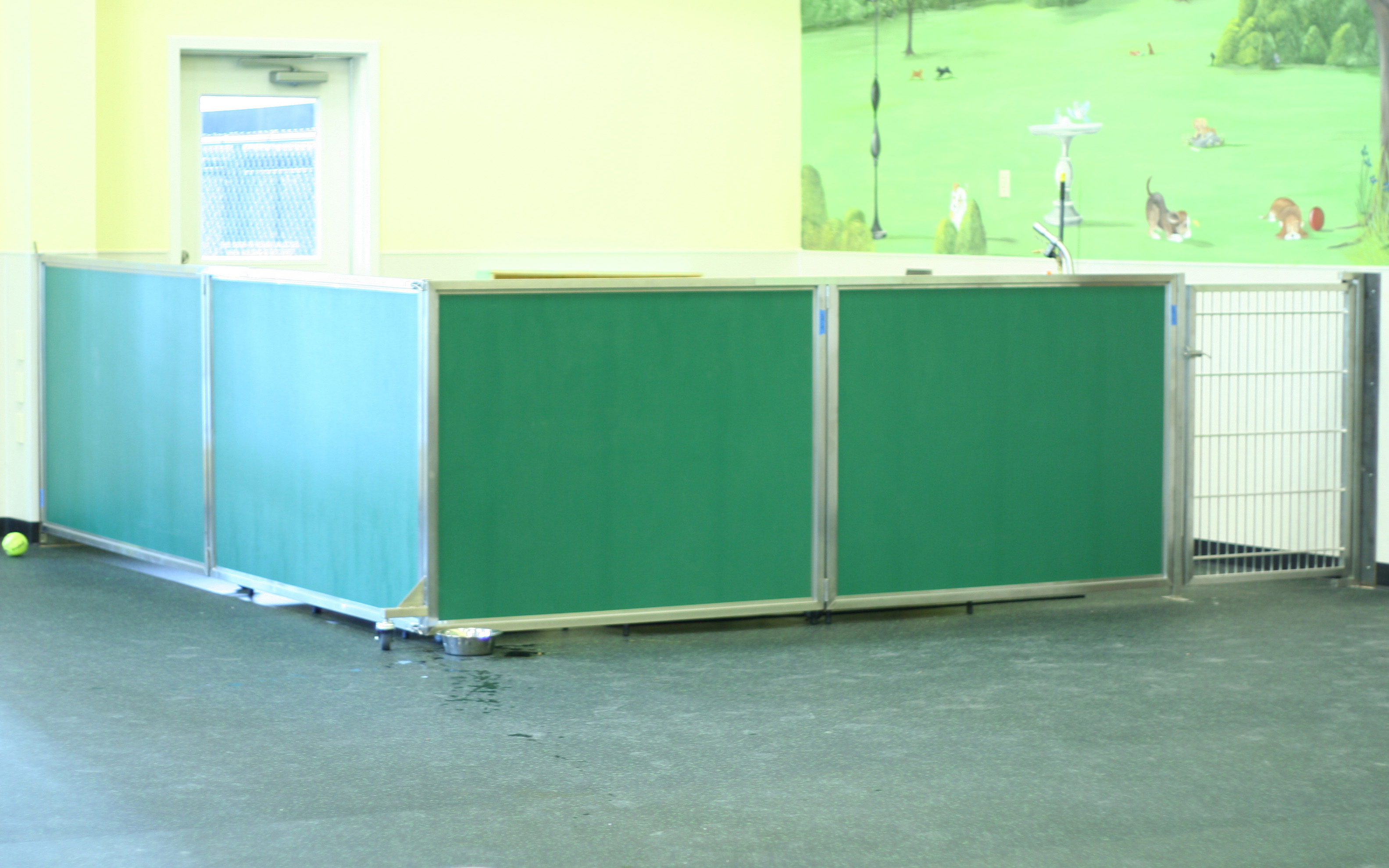 Home gt products catalog gt office partition gt room iders glass wall - Our Dog Day Care Equipment Includes Colorful Kennel Room Dividers