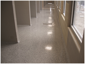 """Direct Animal image: From Jeff Adney: D.R.E.A.M. kennel floors are """"easy to clean and maintain with minimal maintenance."""""""