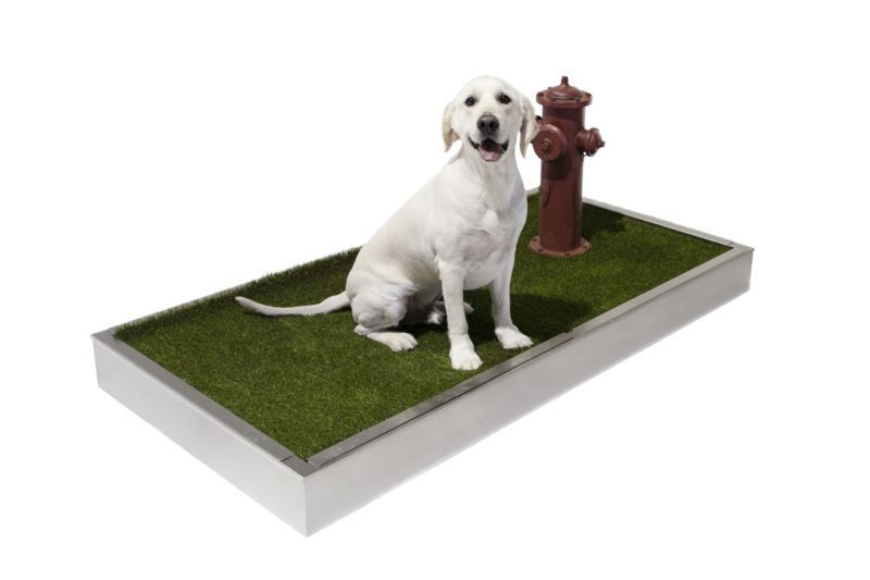 Pet Relief Station Direct Animal