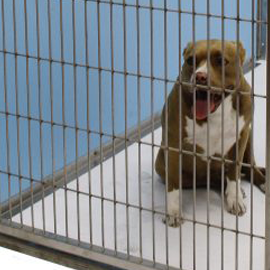 durable kennels